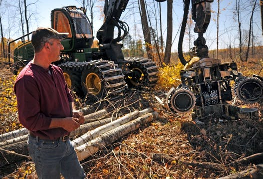 A recent survey of loggers provides some demographic data where we can see patterns in logger demographics. (photo: Richard Sennott, Mpls Star Tribune)